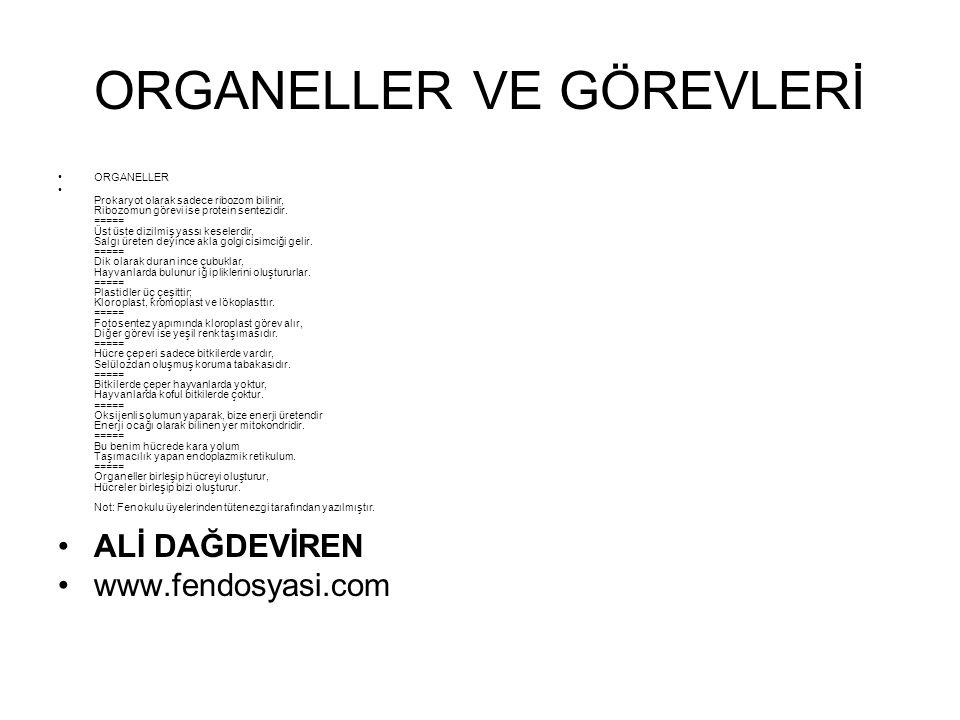 ORGANELLER VE GÖREVLERİ