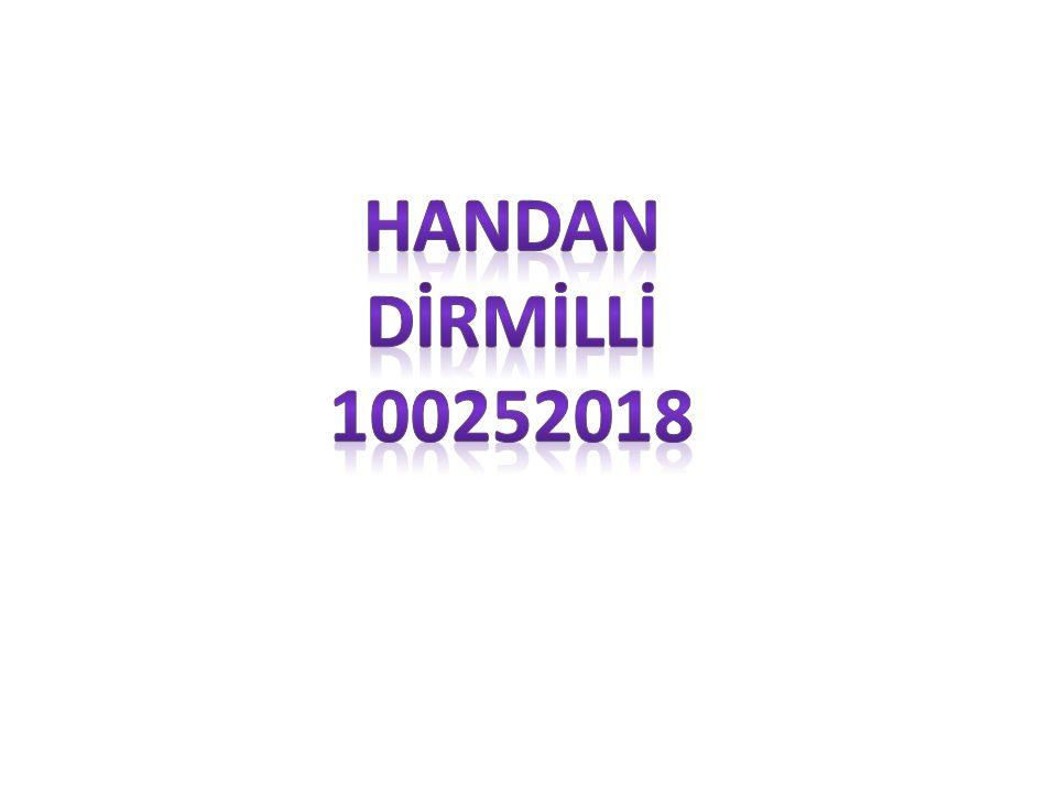 HANDAN DİRMİLLİ 100252018