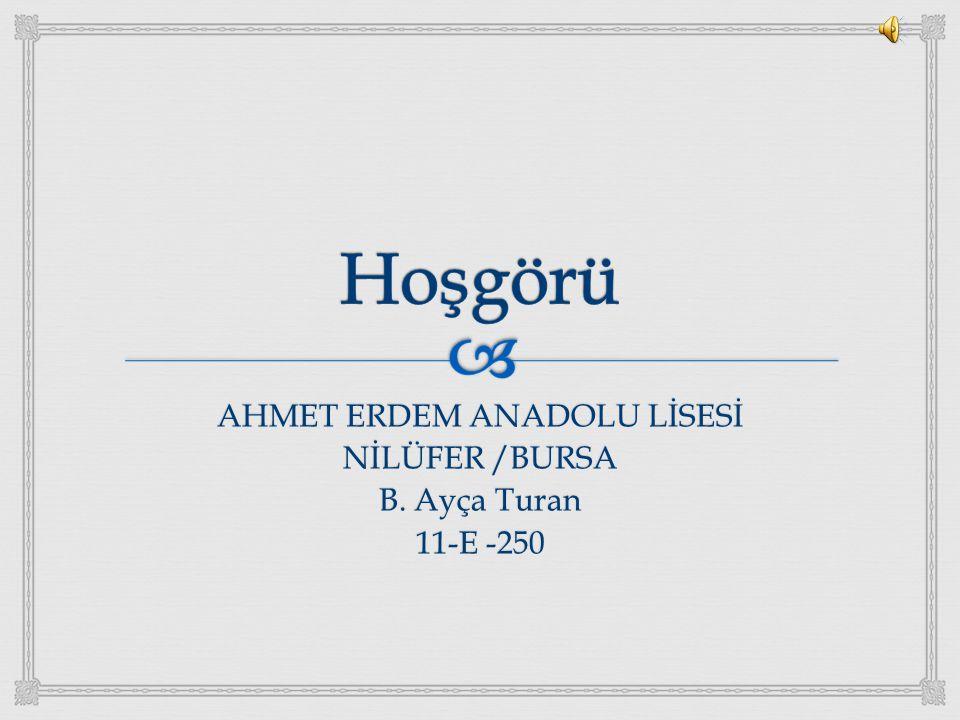 AHMET ERDEM ANADOLU LİSESİ NİLÜFER /BURSA B. Ayça Turan 11-E -250