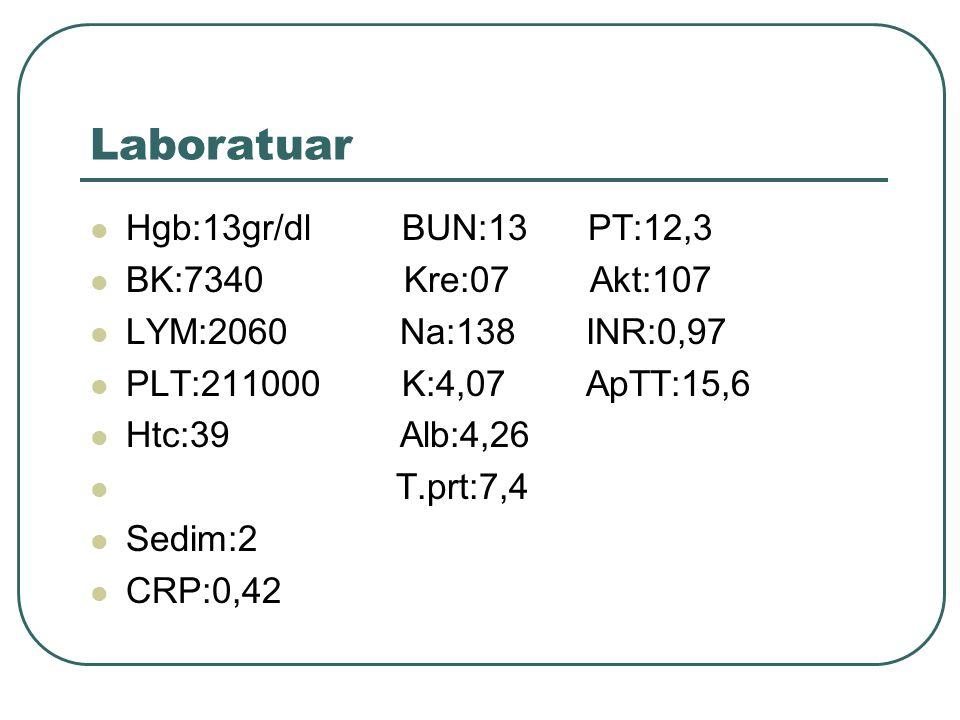 Laboratuar Hgb:13gr/dl BUN:13 PT:12,3 BK:7340 Kre:07 Akt:107