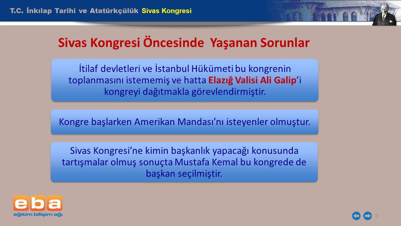 Sivas Kongresi Öncesinde Yaşanan Sorunlar
