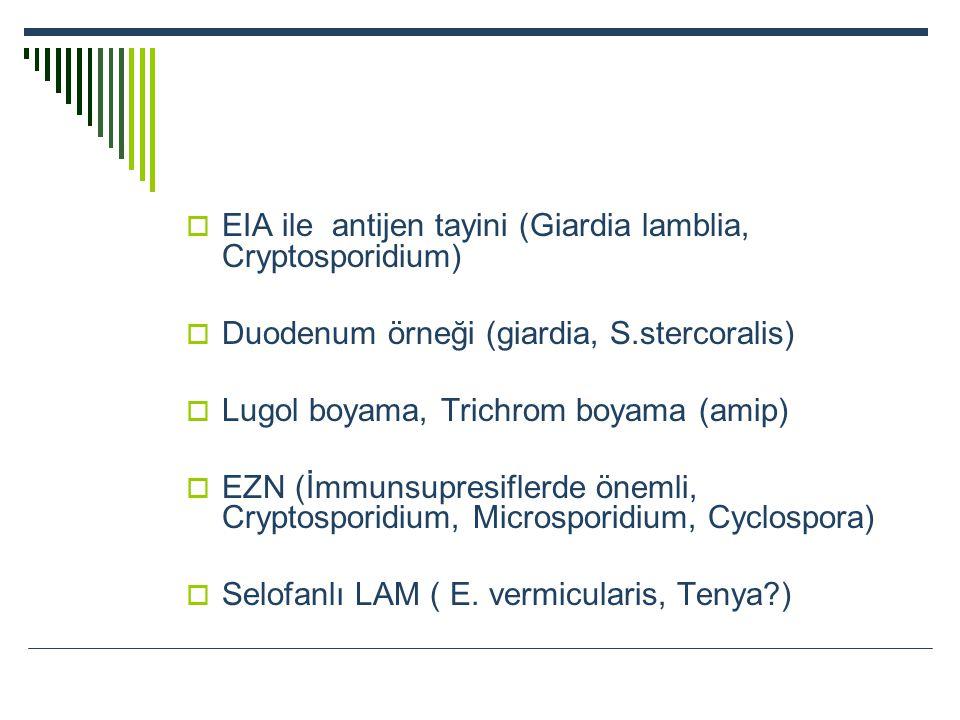 EIA ile antijen tayini (Giardia lamblia, Cryptosporidium)