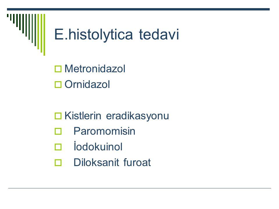 E.histolytica tedavi Metronidazol Ornidazol Kistlerin eradikasyonu