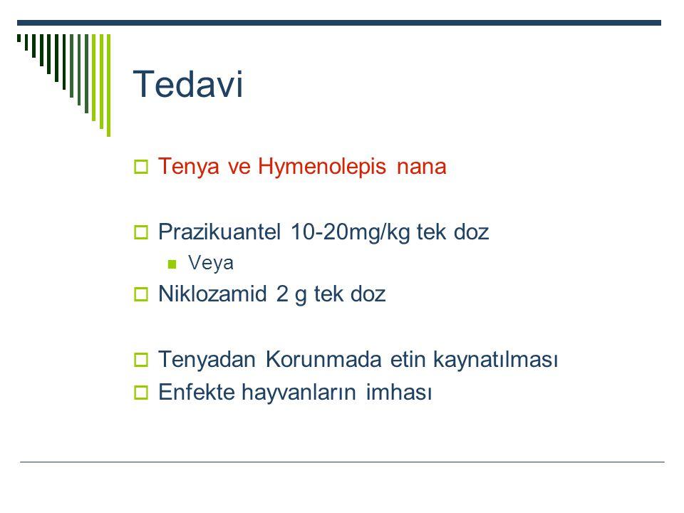 Tedavi Tenya ve Hymenolepis nana Prazikuantel 10-20mg/kg tek doz