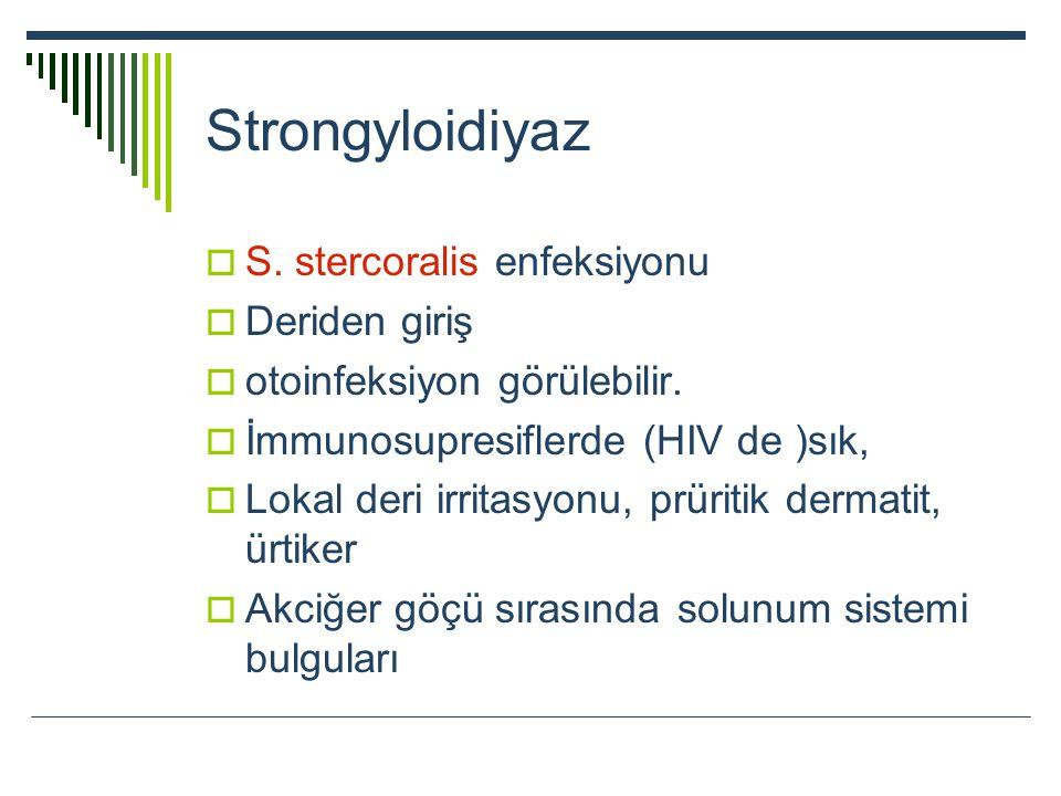 Strongyloidiyaz S. stercoralis enfeksiyonu Deriden giriş