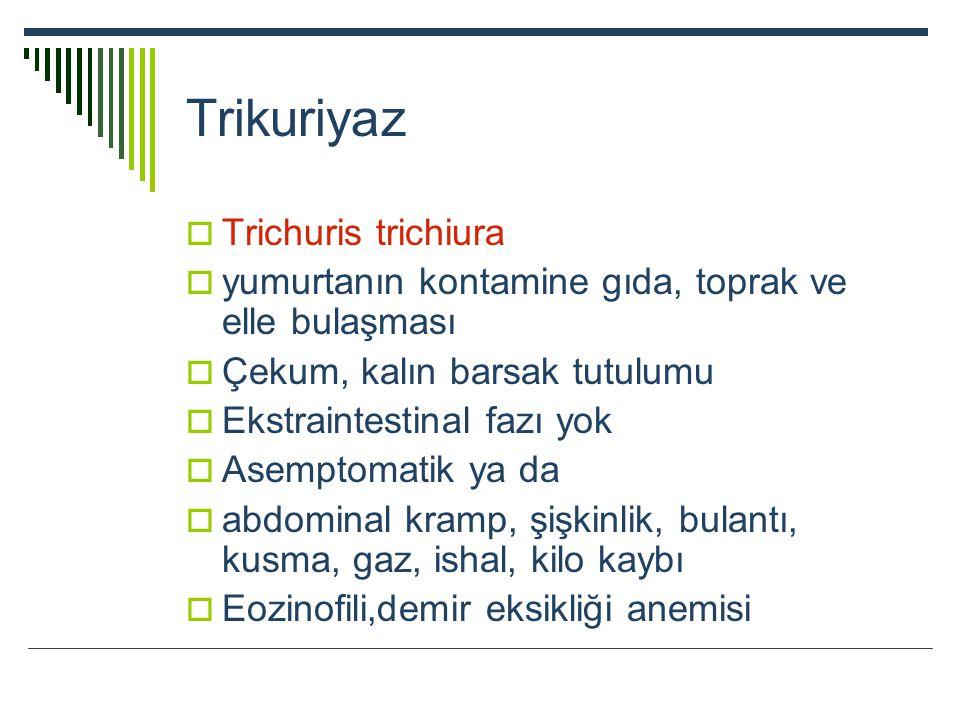 Trikuriyaz Trichuris trichiura