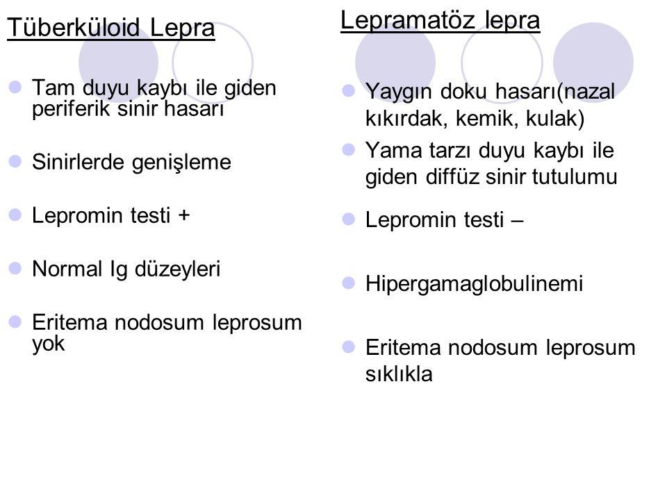 Lepramatöz lepra Tüberküloid Lepra