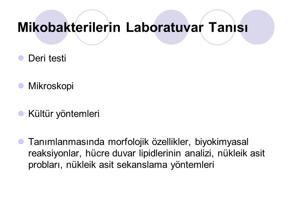 Mikobakterilerin Laboratuvar Tanısı