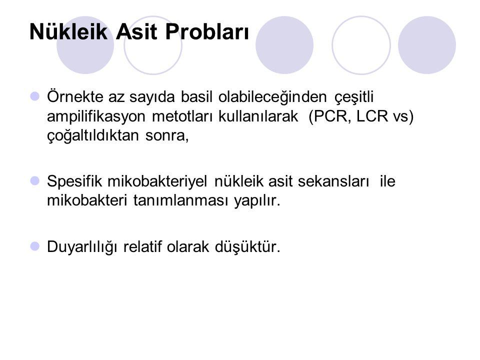 Nükleik Asit Probları Örnekte az sayıda basil olabileceğinden çeşitli ampilifikasyon metotları kullanılarak (PCR, LCR vs) çoğaltıldıktan sonra,