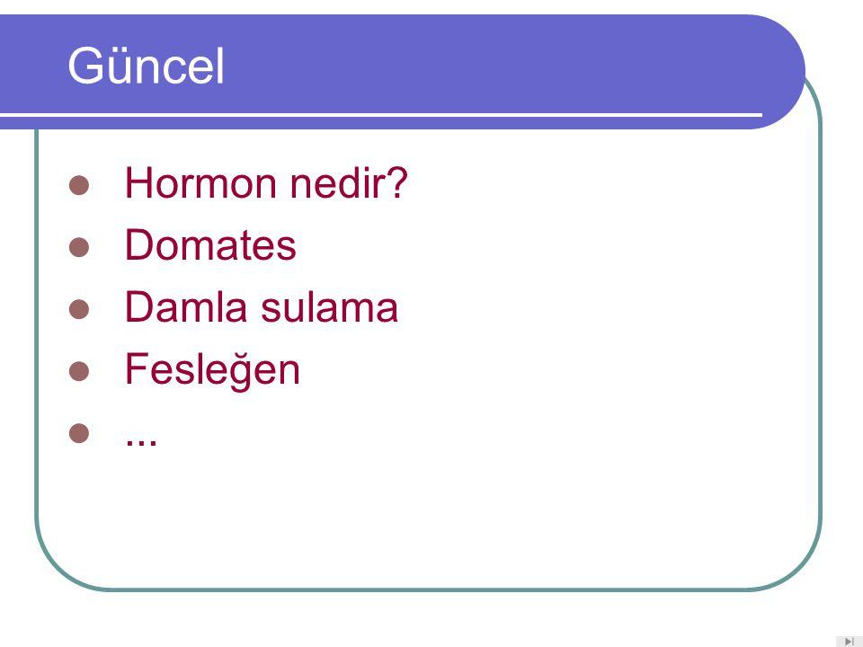 Güncel Hormon nedir Domates Damla sulama Fesleğen ...