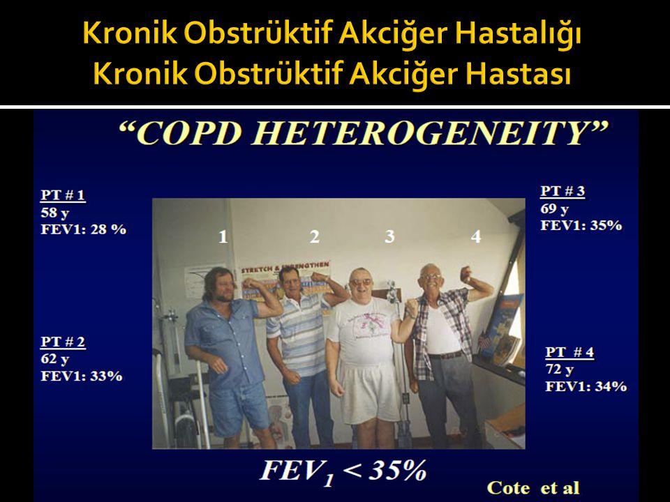 Kronik Obstrüktif Akciğer Hastalığı Kronik Obstrüktif Akciğer Hastası
