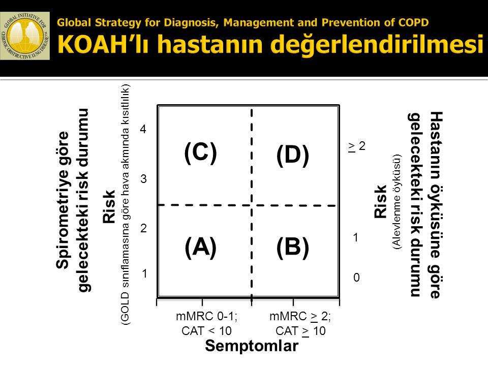 (C) (D) (A) (B) Spirometriye göre gelecekteki risk durumu
