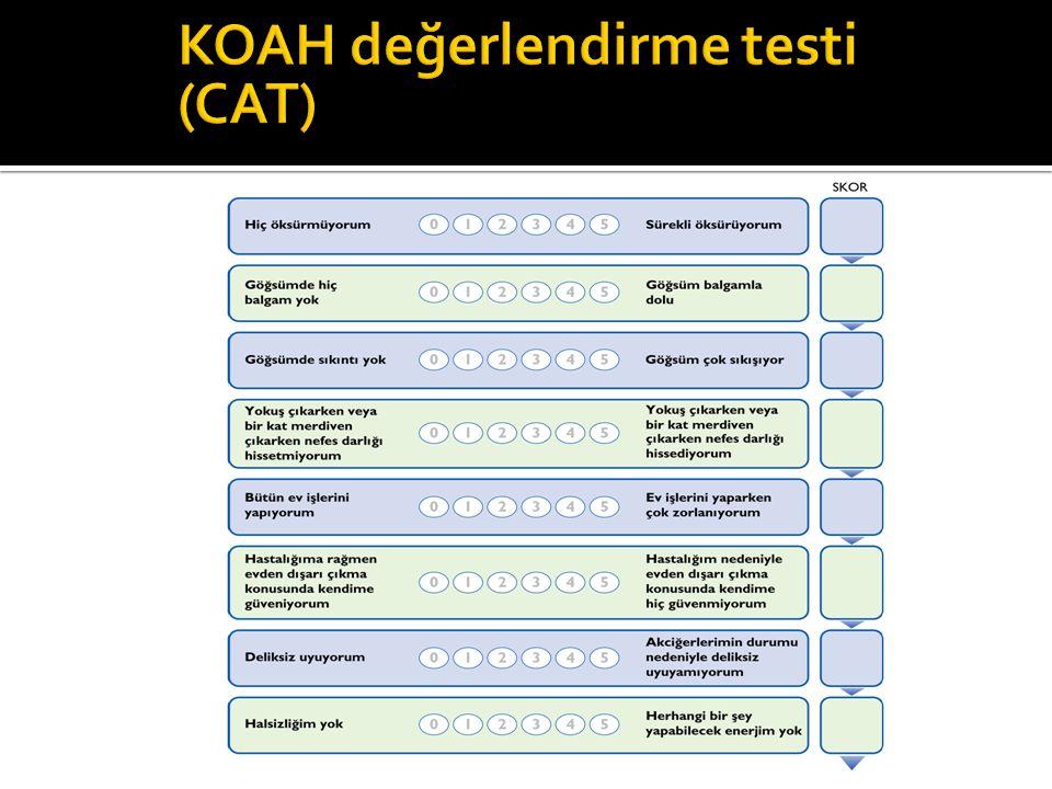 KOAH değerlendirme testi (CAT)