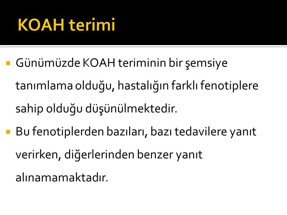 KOAH terimi Günümüzde KOAH teriminin bir şemsiye tanımlama olduğu, hastalığın farklı fenotiplere sahip olduğu düşünülmektedir.