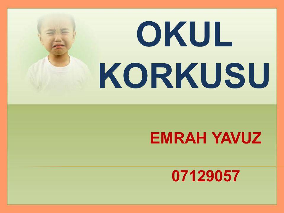 OKUL KORKUSU EMRAH YAVUZ 07129057