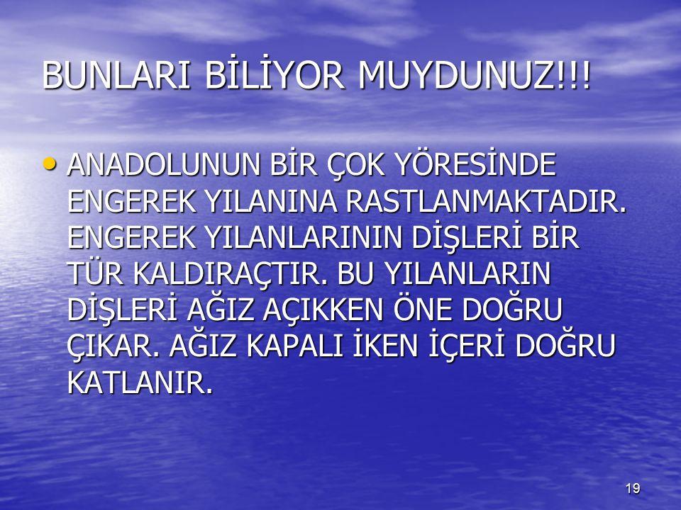 BUNLARI BİLİYOR MUYDUNUZ!!!
