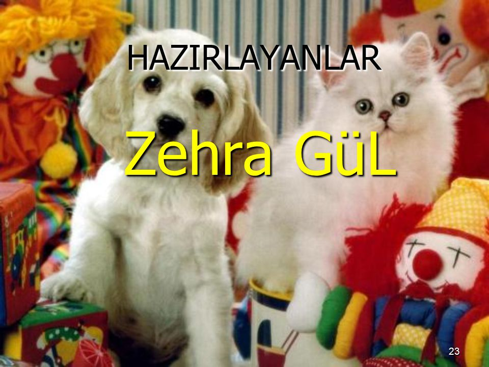 HAZIRLAYANLAR Zehra GüL