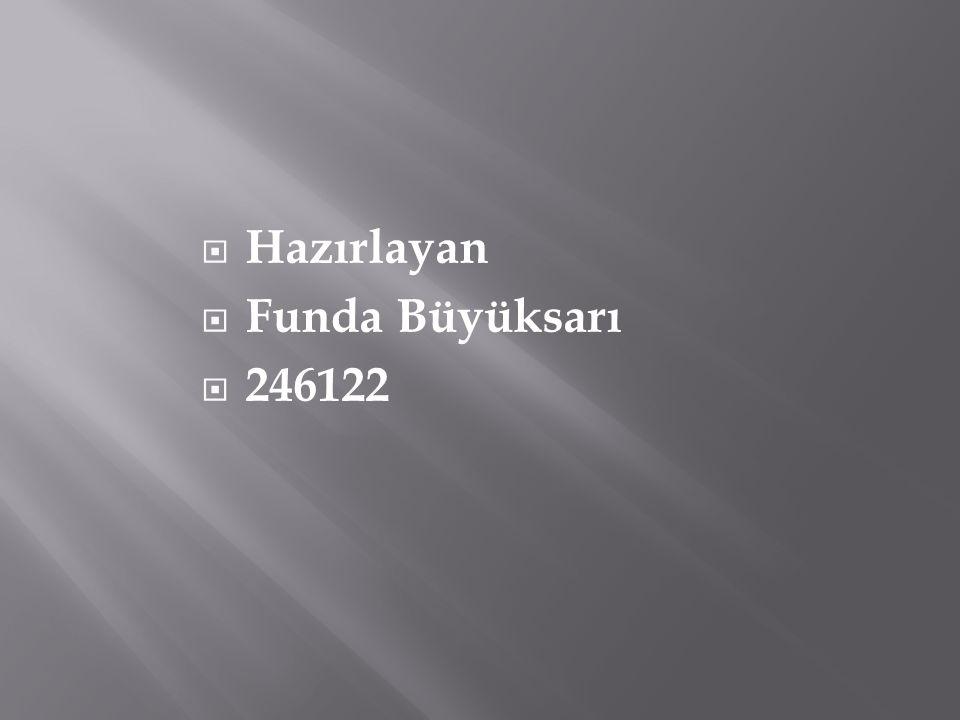 Hazırlayan Funda Büyüksarı 246122