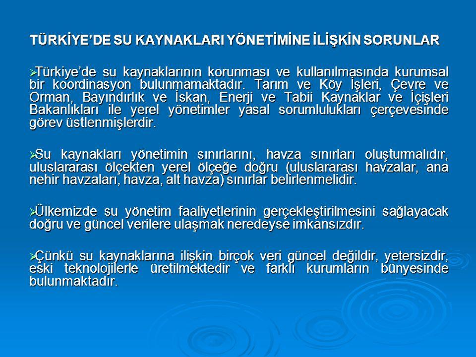 TÜRKİYE'DE SU KAYNAKLARI YÖNETİMİNE İLİŞKİN SORUNLAR