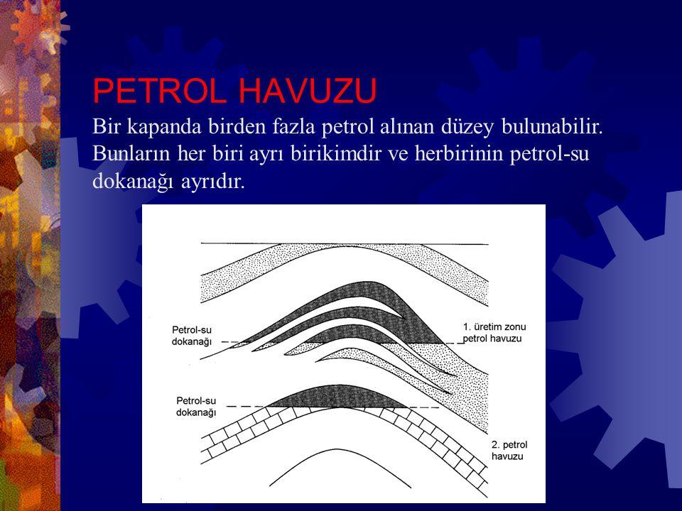 PETROL HAVUZU Bir kapanda birden fazla petrol alınan düzey bulunabilir.