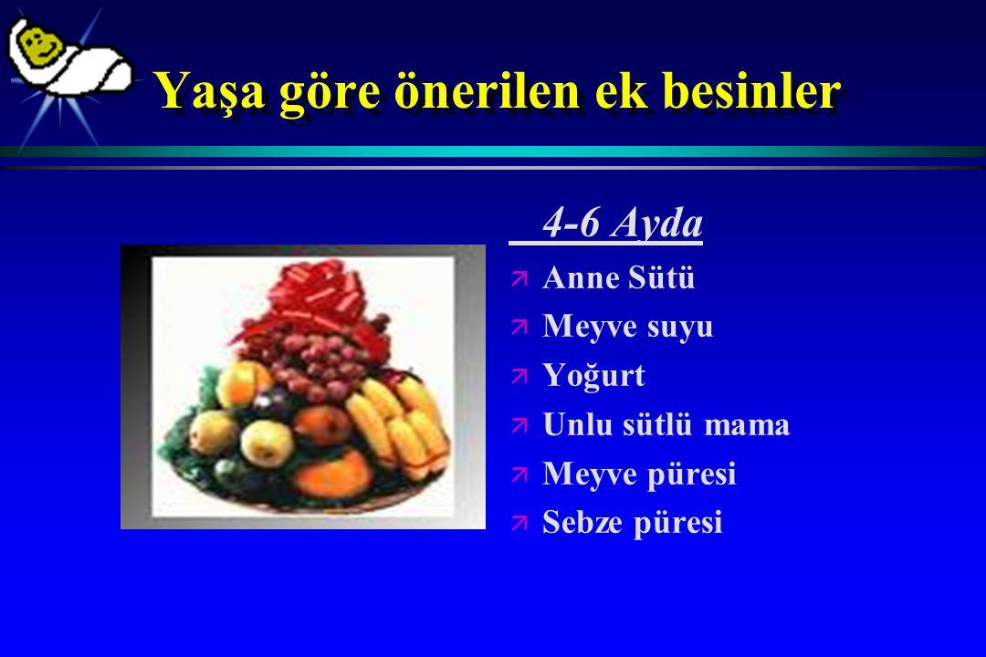 Yaşa göre önerilen ek besinler