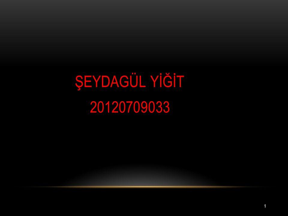 ŞEYDAGÜL YİĞİT 20120709033