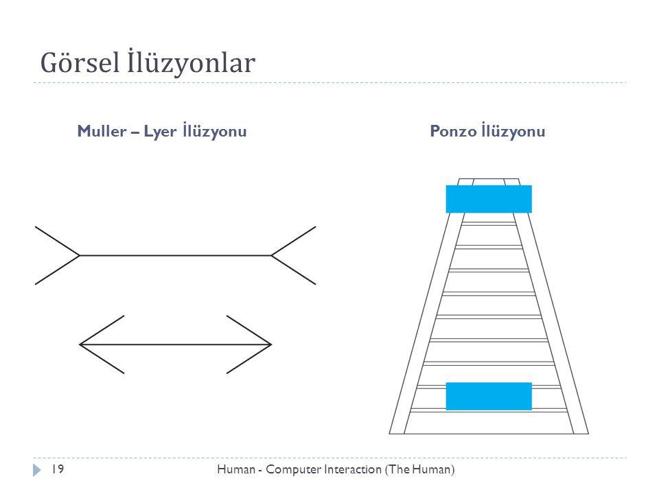 Görsel İlüzyonlar Muller – Lyer İlüzyonu Ponzo İlüzyonu