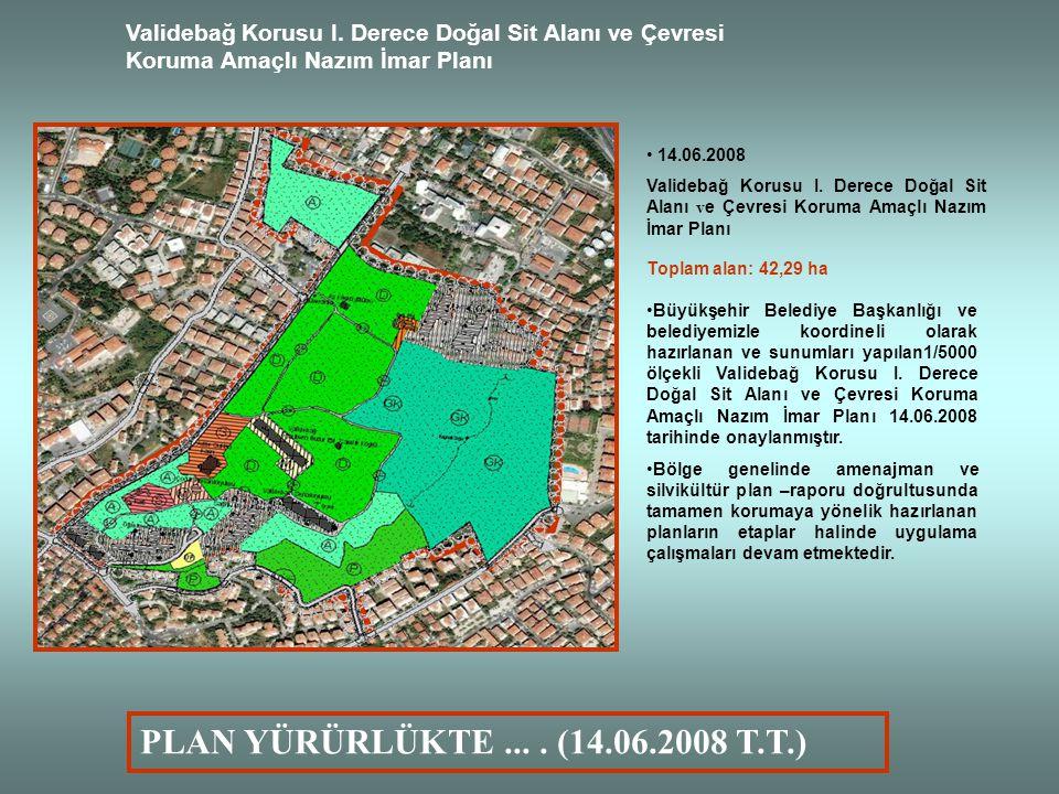 Validebağ Korusu I. Derece Doğal Sit Alanı ve Çevresi Koruma Amaçlı Nazım İmar Planı