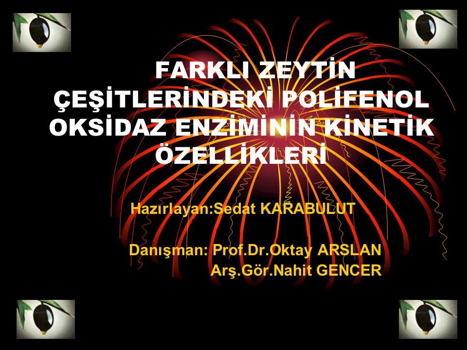 Danışman: Prof.Dr.Oktay ARSLAN