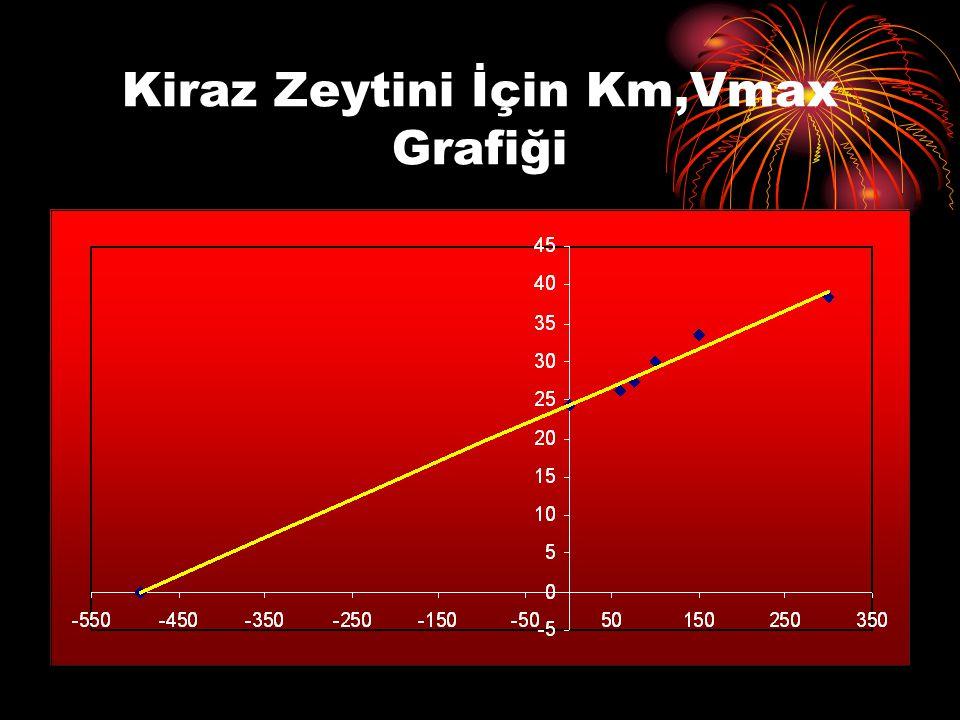 Kiraz Zeytini İçin Km,Vmax Grafiği