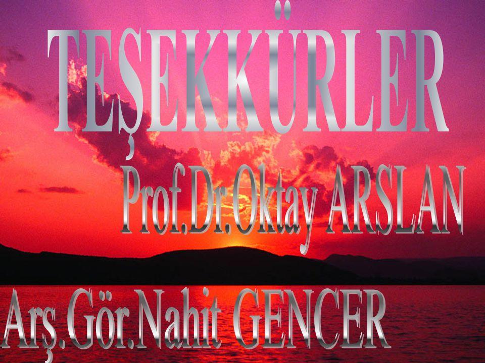 TEŞEKKÜRLER Prof.Dr.Oktay ARSLAN Arş.Gör.Nahit GENCER