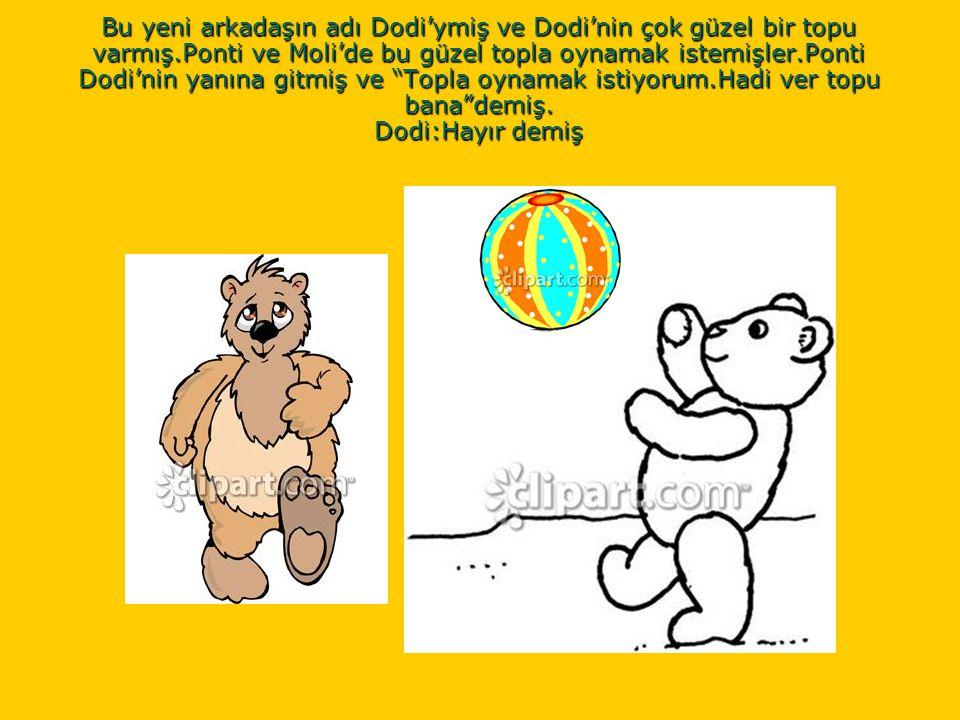 Bu yeni arkadaşın adı Dodi'ymiş ve Dodi'nin çok güzel bir topu varmış