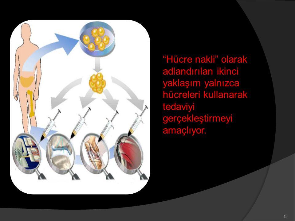 Hücre nakli olarak adlandırılan ikinci yaklaşım yalnızca hücreleri kullanarak tedaviyi gerçekleştirmeyi amaçlıyor.