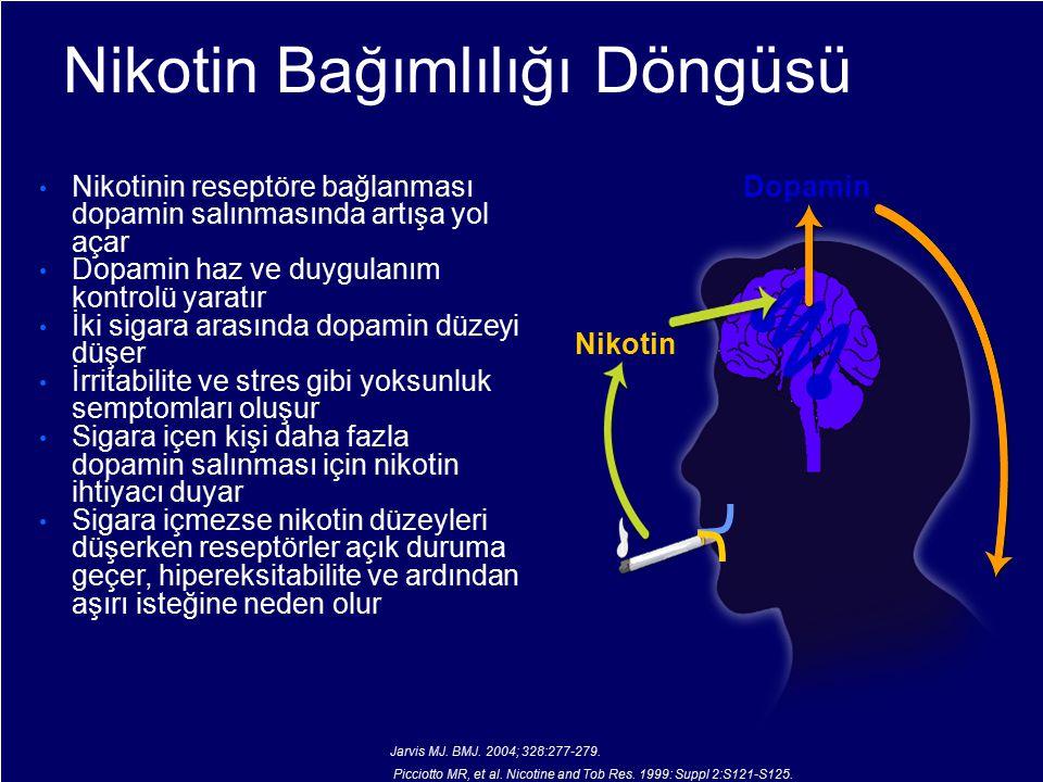 Nikotin Bağımlılığı Döngüsü