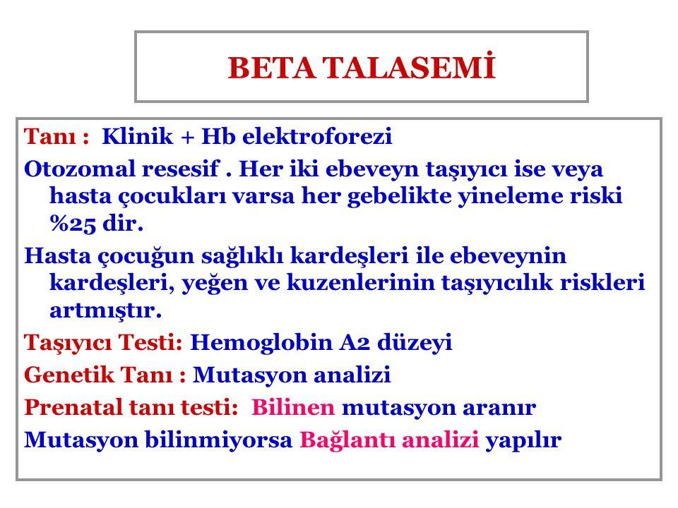 BETA TALASEMİ