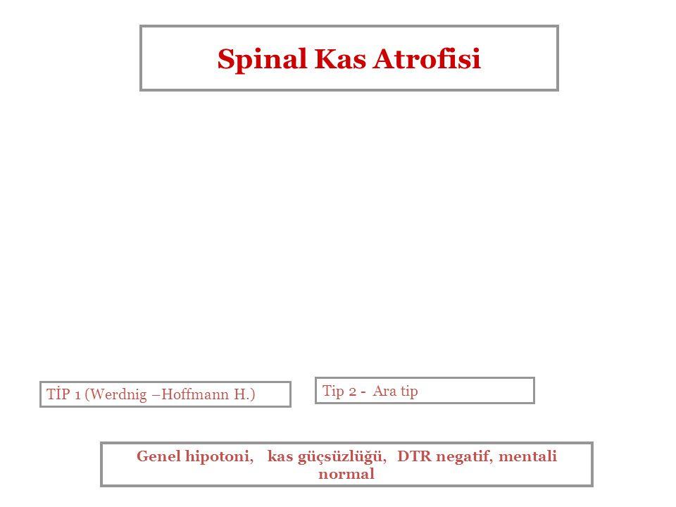 Genel hipotoni, kas güçsüzlüğü, DTR negatif, mentali normal