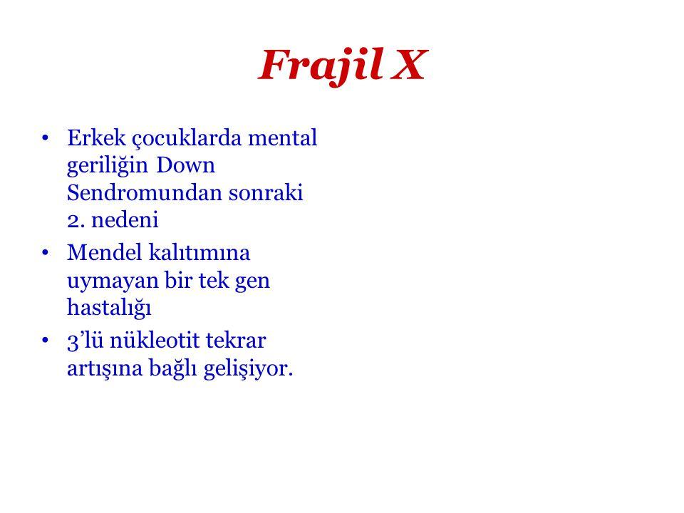 Frajil X Erkek çocuklarda mental geriliğin Down Sendromundan sonraki 2. nedeni. Mendel kalıtımına uymayan bir tek gen hastalığı.