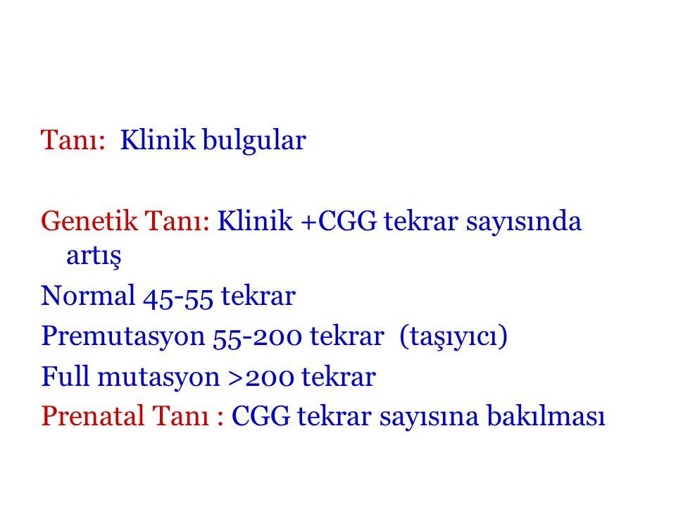 Tanı: Klinik bulgular Genetik Tanı: Klinik +CGG tekrar sayısında artış Normal 45-55 tekrar Premutasyon 55-200 tekrar (taşıyıcı) Full mutasyon >200 tekrar Prenatal Tanı : CGG tekrar sayısına bakılması