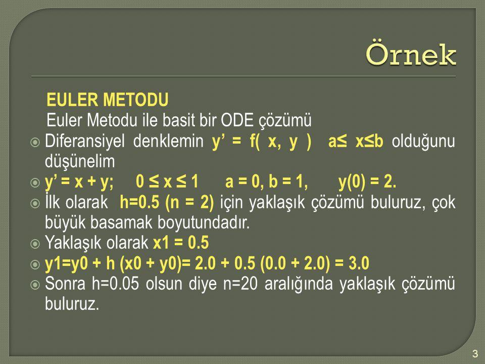 Örnek EULER METODU Euler Metodu ile basit bir ODE çözümü