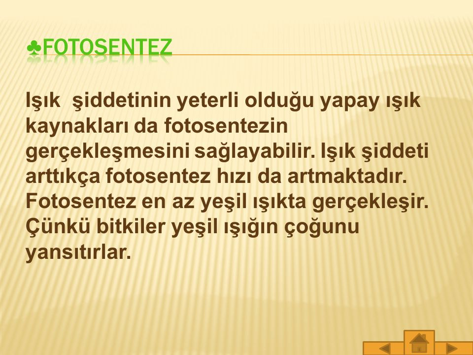 ♣FOTOSENTEZ