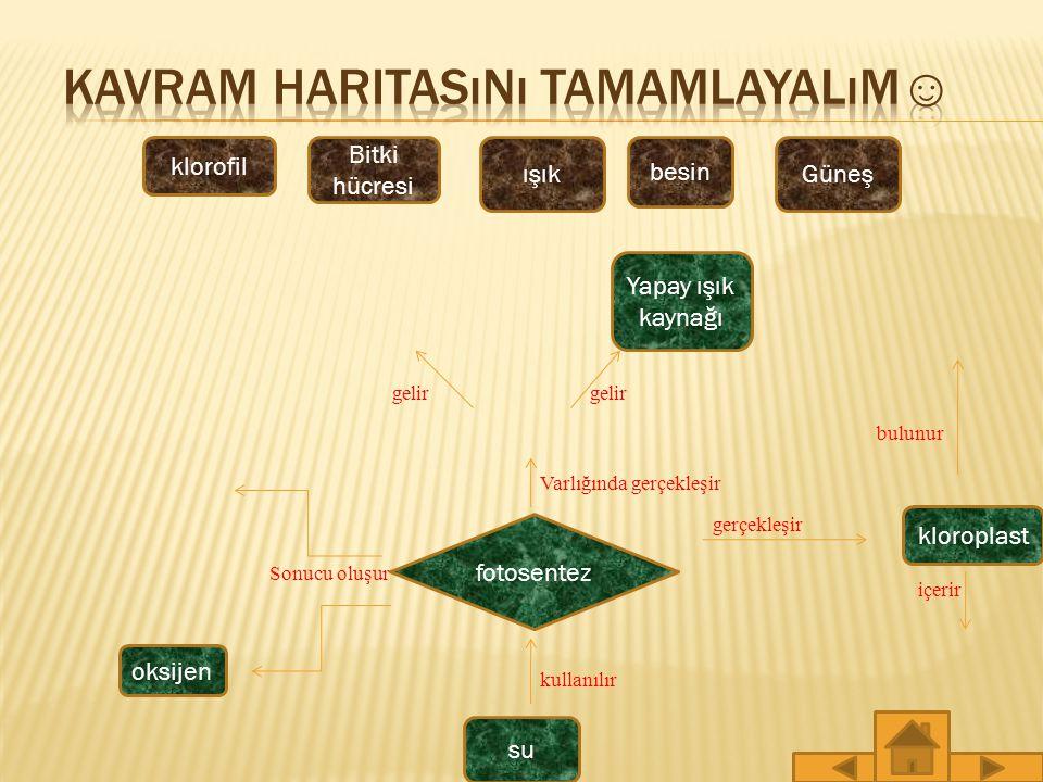 Kavram Haritasını Tamamlayalım☺