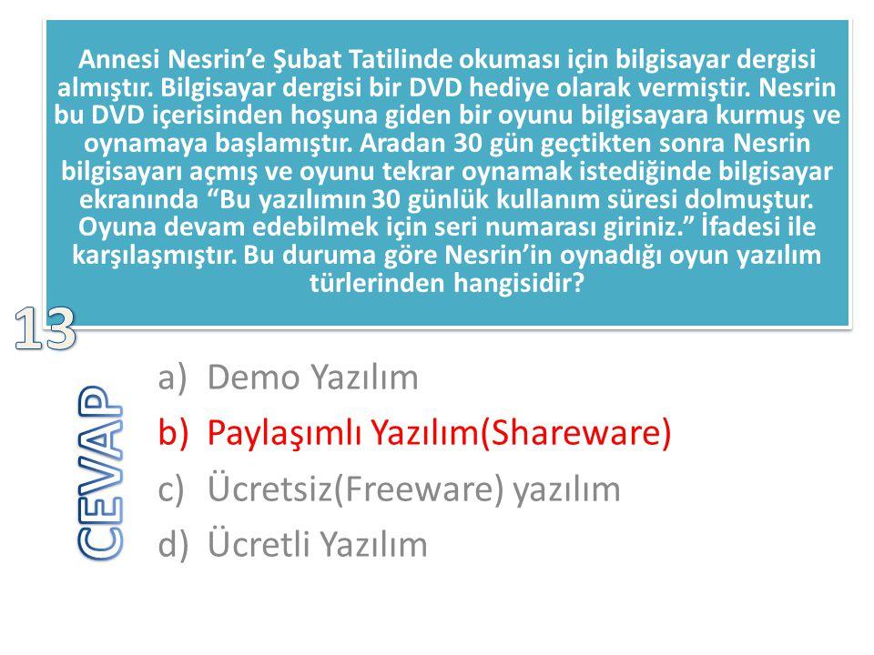 13 CEVAP Demo Yazılım Paylaşımlı Yazılım(Shareware)