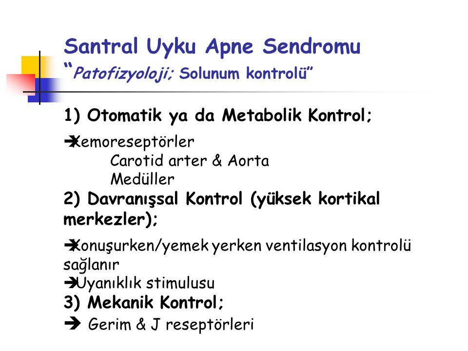 Santral Uyku Apne Sendromu Patofizyoloji; Solunum kontrolü