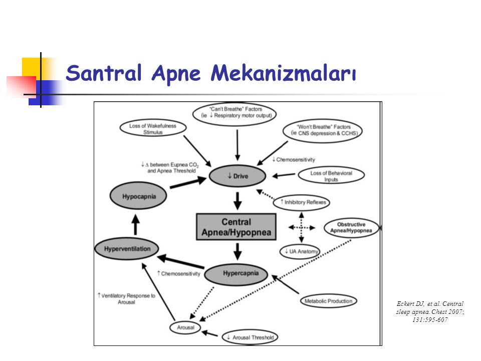 Santral Apne Mekanizmaları