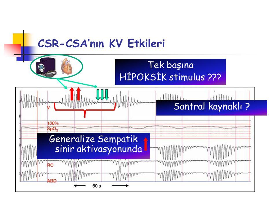CSR-CSA'nın KV Etkileri