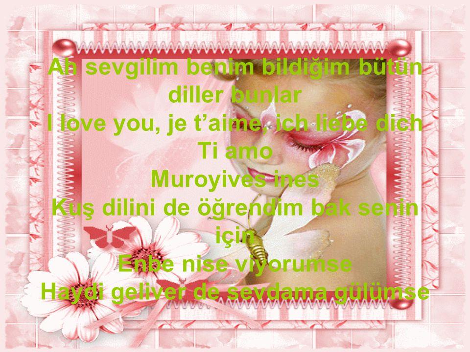 Ah sevgilim benim bildiğim bütün diller bunlar I love you, je t'aime, ich liebe dich Ti amo Muroyives ines Kuş dilini de öğrendim bak senin için Enbe nise viyorumse Haydi geliver de sevdama gülümse