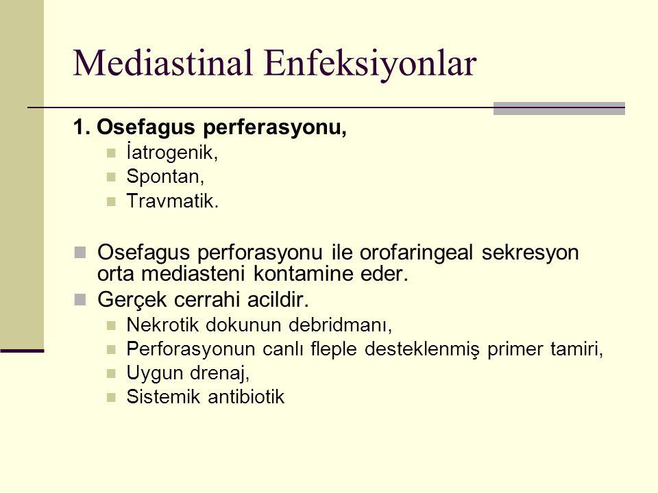 Mediastinal Enfeksiyonlar