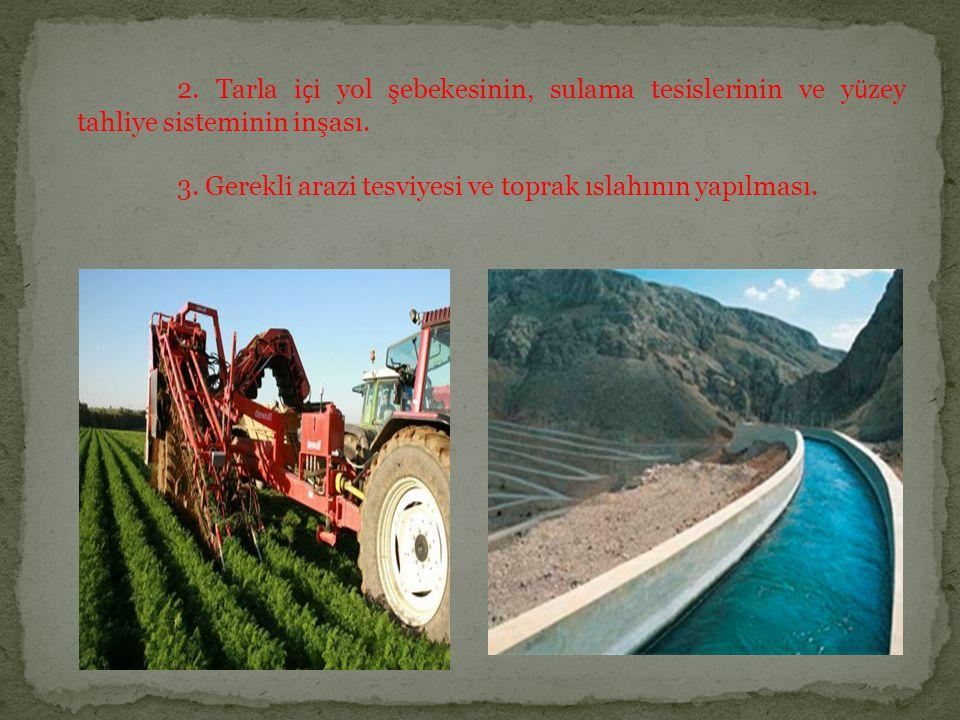 2. Tarla içi yol şebekesinin, sulama tesislerinin ve yüzey tahliye sisteminin inşası.