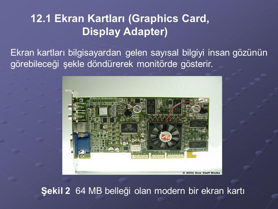 12.1 Ekran Kartları (Graphics Card, Display Adapter)