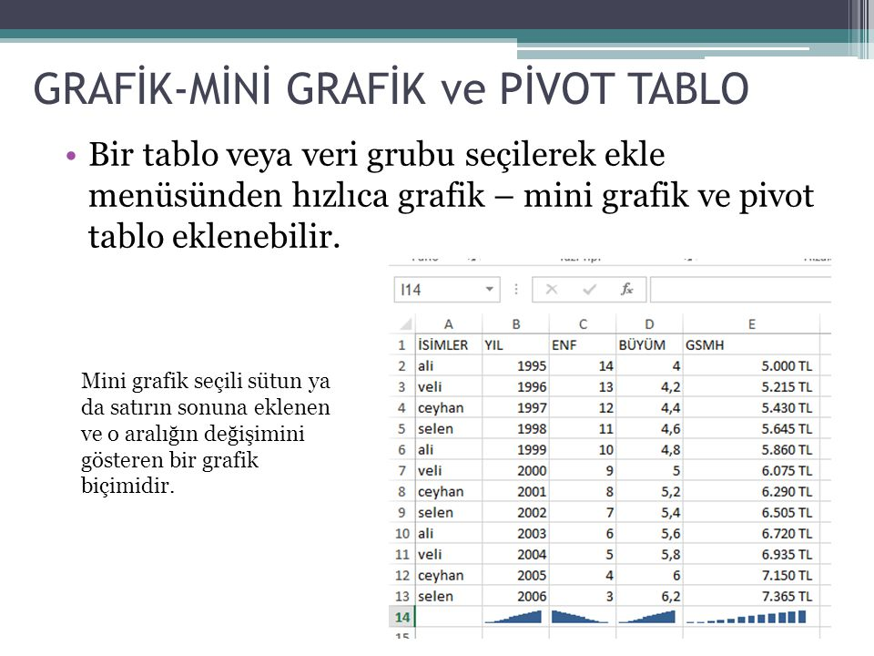GRAFİK-MİNİ GRAFİK ve PİVOT TABLO